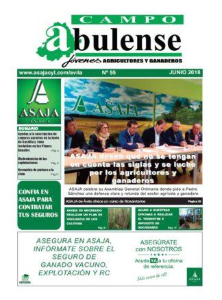 Campo Abulense Nº55