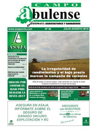 Campo Abulense Nº56