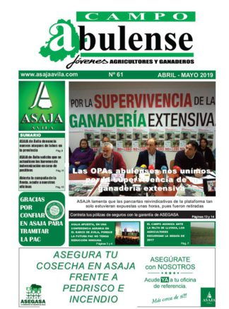 Campo Abulense Nº61