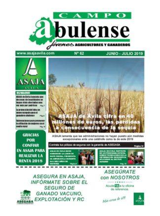 Campo Abulense Nº62