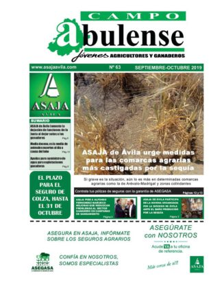 Campo Abulense Nº63