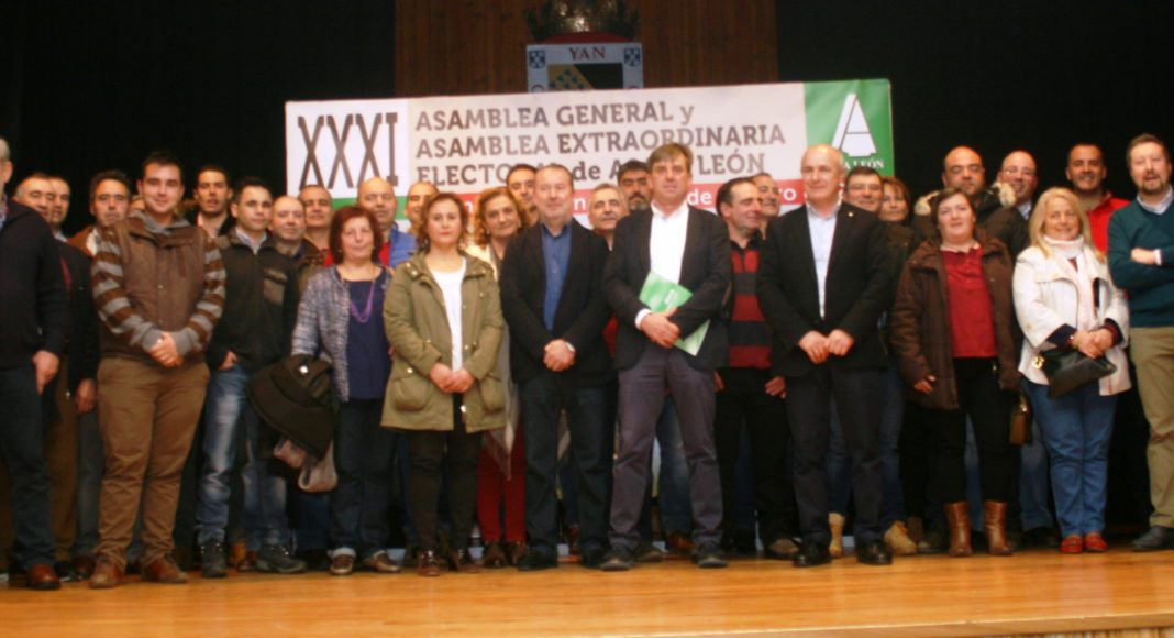 Junta Directiva elegida en febrero de 2017