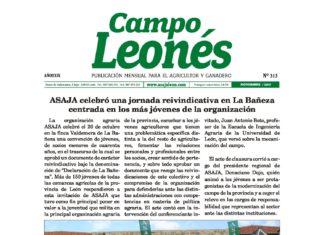 Campo leones noviembre 2017