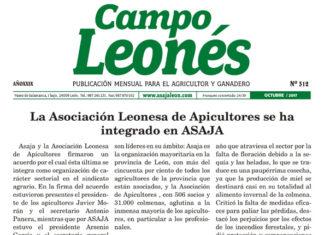 Campo Leonés