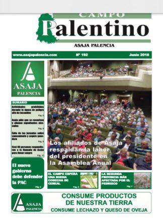 Campo Palentino junio 2018