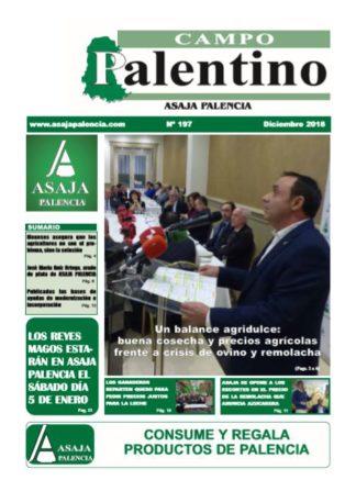 Campo Palentino diciembre 2018