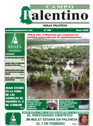 Campo Palentino enero 2020