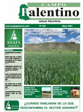 Campo Palentino mayo 2021