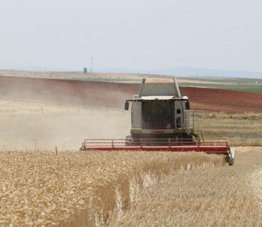 Labores durante la cosecha de cereales, en una explotación salmantina. Foto: ASAJA Salamanca.