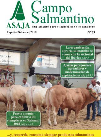 Campo Salmantino Salamaq 2018