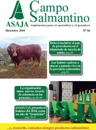 Campo Salmantino diciembre 2018