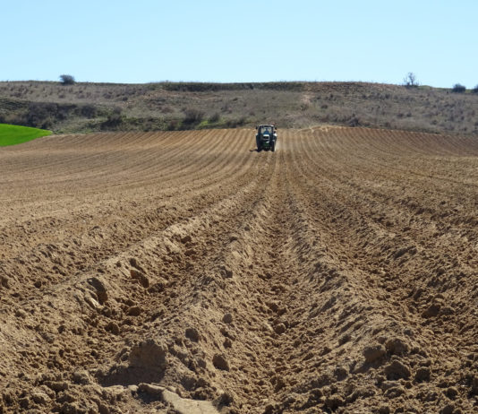 Un agricultor, preparando el terreno para la siembra de patata en el campo salmantino. FOTO: ASAJA Salamanca.