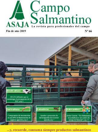 Campo Salmantino Fin de año 2019