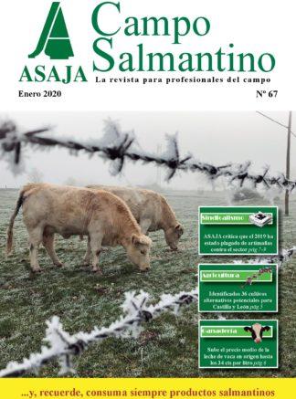 Campo Salmantino enero 2020