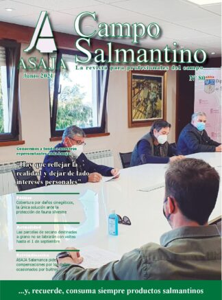 Campo Salmantino junio 2021