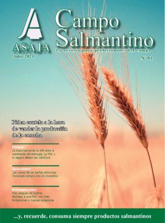 Campo Salmantino julio 2021