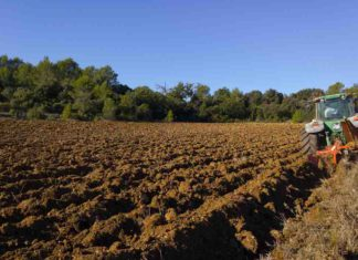 ASAJA exige el anticipo de las ayudas de la PAC del Desarrollo Rural
