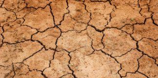Requisitos para optar a los prestamos por sequía