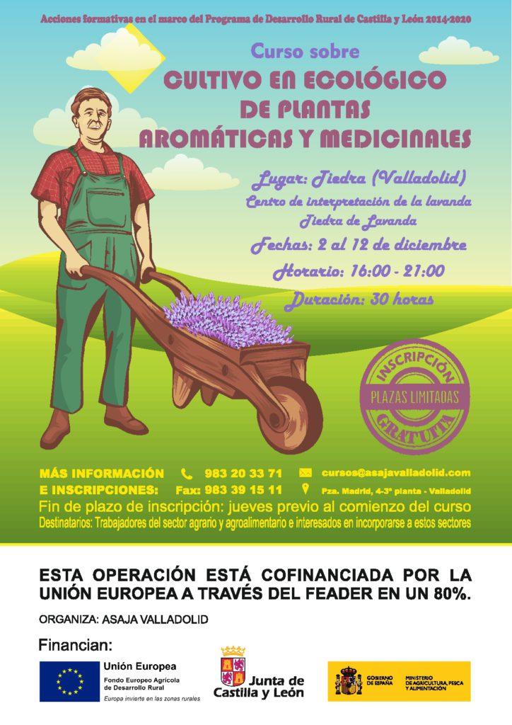 Curso sobre cultivo en ecológico de plantas aromáticas y medicinales