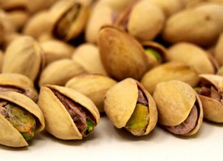 Curso gratuito sobre el cultivo de frutos secos en Castilla y León
