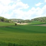 Balance pagos PAC 2012: 1.141 millones € al sector agrario