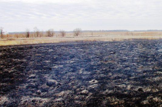 Los agricultores ya pueden presentar su solicitud para la quema de rastrojos de cereales