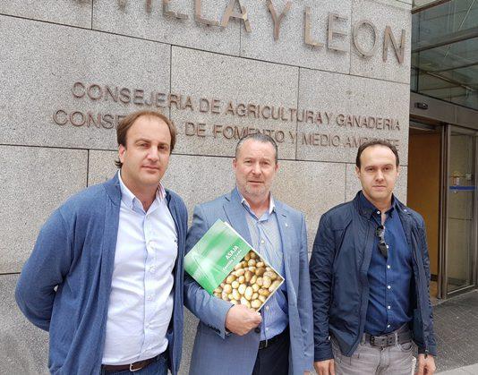 ASAJA lamenta que aún no haya respaldo suficiente para que cuaje la interprofesional de la patata en Castilla y León