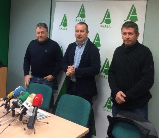 ASAJA pide que se refuercen los controles para que el cordero importado no se venda como lechazo de nuestra tierra