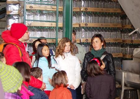 Visita a una almazara ecológica con cata de aceites en Ahigal de los Aceiteros