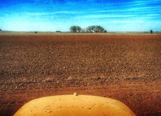 Campo provincia Palencia