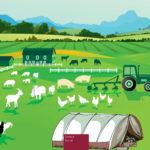 Guía europea sobre salud y seguridad de los trabajadores en la agricultura, ganadería, horticultura y silvicultura