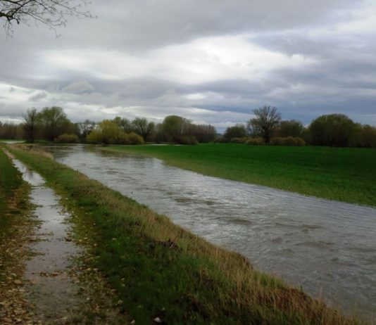 ASAJA advierte sobre las pérdidas en miles de hectáreas agrícolas anegadas por el agua