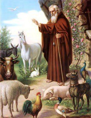 Con ocasión de la fiesta de San Antón