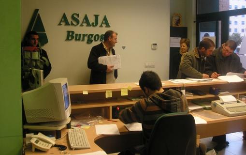 ASAJA advierte que este año la comunicación de cesiones de derechos de ayuda coincidirá con el periodo PAC