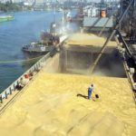 ASAJA valora que la Comisión Europea doble los derechos de importación de maíz y cereales
