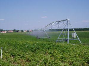 6.114 titulares de Castilla y León participarán en la encuesta sobre estructuras de explotaciones agrarias del INE