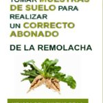 AIMCRA ofrece su servicio de análisis de suelos a todos los cultivadores de remolacha
